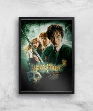 Harry Potter and the Chamber Of Secrets Giclee Art Print - A3 - Black Frame chez Casa Décoration