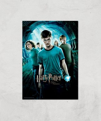 Harry Potter and the Order Of The Phoenix Giclee Art Print - A4 - Print Only chez Casa Décoration