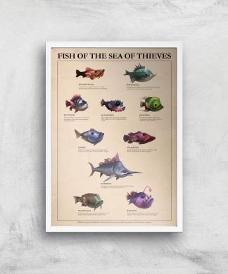 Fish Of The Sea Of Thieves Giclee Art Print - A3 - White Frame chez Casa Décoration